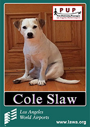 Cole Staw